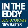In the Eddy - 2016 EOS Ecology newsletter.