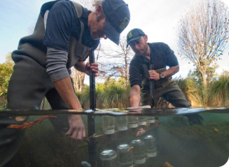 Removing caged invertebrates from the Avon River control site