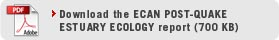 Download ECan Post-Quake Estuary Ecology Report