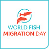 World Fish Migration Day.