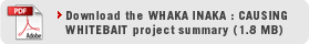 Download Whaka Inaka Project Summary Document